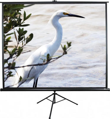 Elite Screens Tripod T85UWS1 152 x 152