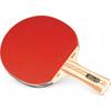 Ракетка для настольного тенниса Atemi PRO арт.4000 AN